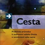 Cesta / Brandon Bays 2007