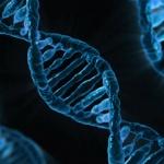M�e b�t trauma p�ed�no skrze na�i DNA?