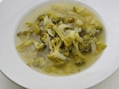 Polievka brokolicová BZL